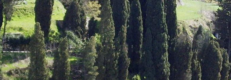 Cimitero di ebraico Pitigliano