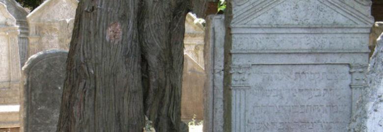 Cimitero ebraico del Lido