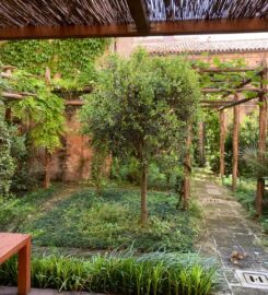 Giardino Segreto della Scola Spagnola